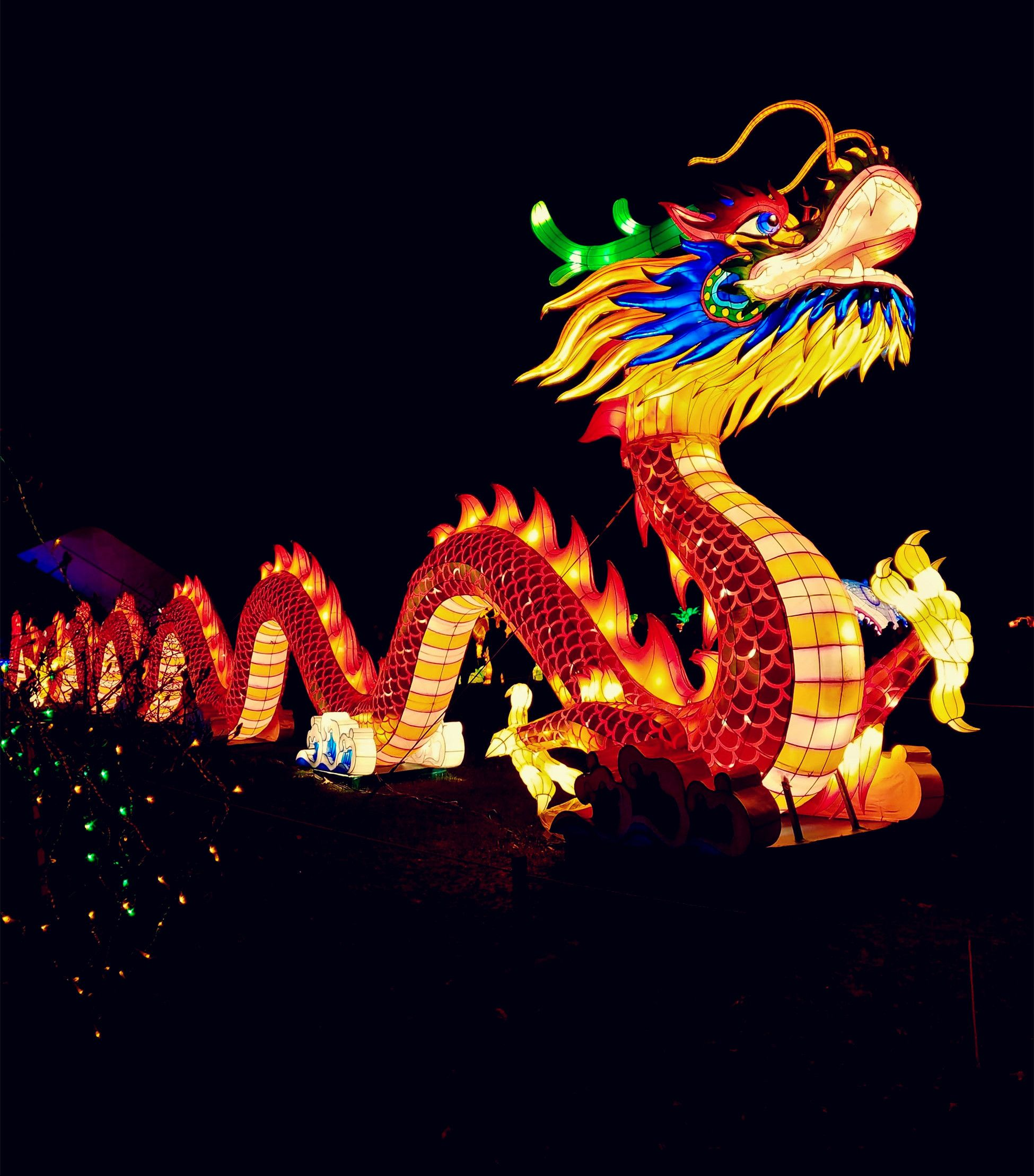 chinese new year dragon dance cchatty chinese new year dragon dance cchatty